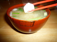 Green onion and tofu Miso soup-served