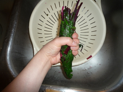 Beet leaves-squeeze out water